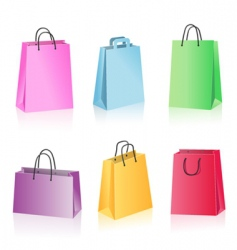 shopping package vector image