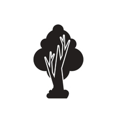 black icon on white background tree vector image vector image