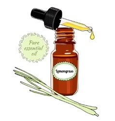 Bottle of lemongrass essential oil with dropper vector