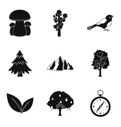 hunting ground icons set simple style vector image vector image