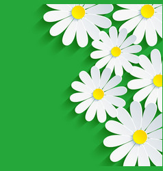 3d flower chamomile spring background abstract vector image