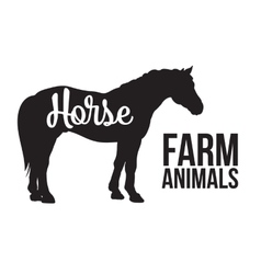 Isolated one black horse with lettering vector