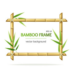 realistic 3d detailed bamboo shoots frame vector image vector image