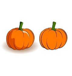 two pumpkins vector image vector image