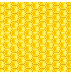 and illutration of honeycomb vector image vector image
