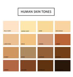Human skin tone set vector
