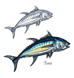 tuna fish isolated sketch icon vector image vector image