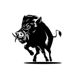 Wild Pig Boar vector image
