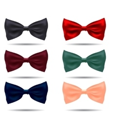 Set of silk bow ties on a background vector