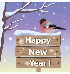 New year card with bullfinch vector image