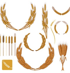 Set of wheat wreath and design elements vector