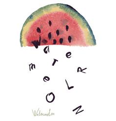 Watercolor of watermelon vector