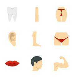 Outer parts of body icons set flat style vector