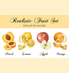 relistic fruits set vector image