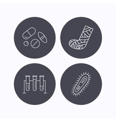 Broken foot bacteria and medical pills icons vector