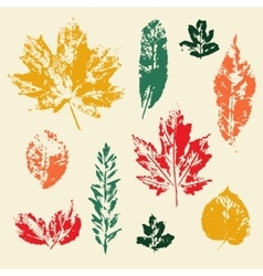 colorful leaves prints set vector image