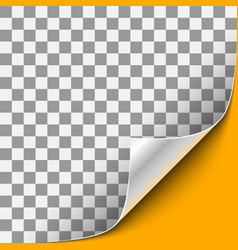 Curled corner with orange background vector
