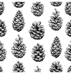 Pine cone seamless pattern botanical hand drawn vector
