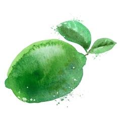 Lime logo design template fruit or food vector