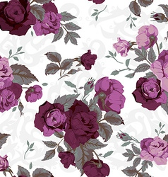 Seamless floral pattern with purple roses on white vector image