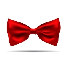 Black silk bow tie on a background vector