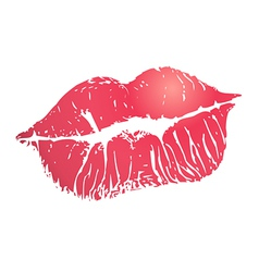 print of lips vector image