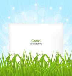 Summer card with green grass and paper sheet vector