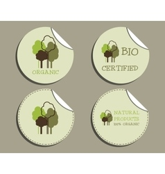 Set of unusual green organic labels - stickers for vector