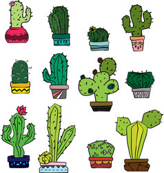 Cactus sketch colored vector