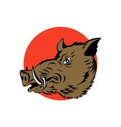 Wild pig boar head vector