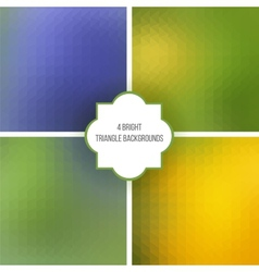 triangle textures vector image