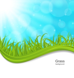 Summer natural postcard with green grass vector