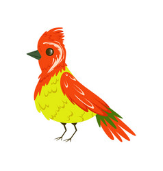 bright colorful bird with a tuft vector image