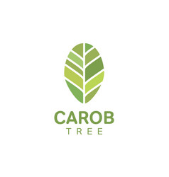 Carob tree leaf logo template vector