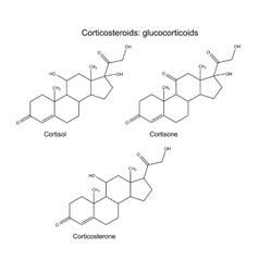 Chemical formulas of corticosteroids vector