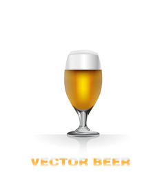 Light beer glass vector