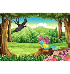 Birds at the forest vector