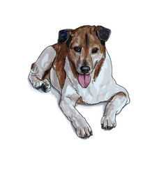 lying brown dog vector image vector image
