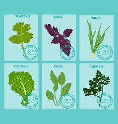set vegetables and herbs flat healthy vegetarian vector image vector image