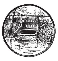 Cranberry bog outlet vintage vector