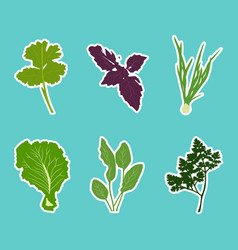 set of flat cartoon vegetables stickers vector image