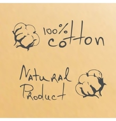 Natural products sketch cotton vector