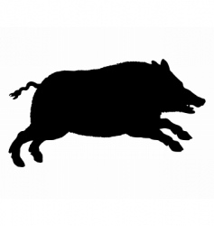 Silhouette of a wild pig vector
