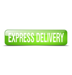 Express delivery green square 3d realistic vector