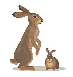 hares vector image