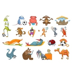 Set of animals sport vector