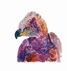 Watercolor of african crowned eagle on white vector