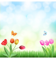 Grass tulips background vector