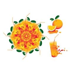 citrus mandala vector image