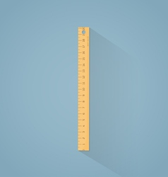 Ruler flat vector image vector image